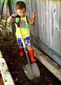 gardening projects with the kids