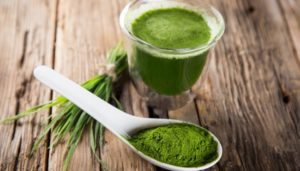 Top Reasons to Drink Wheatgrass Daily